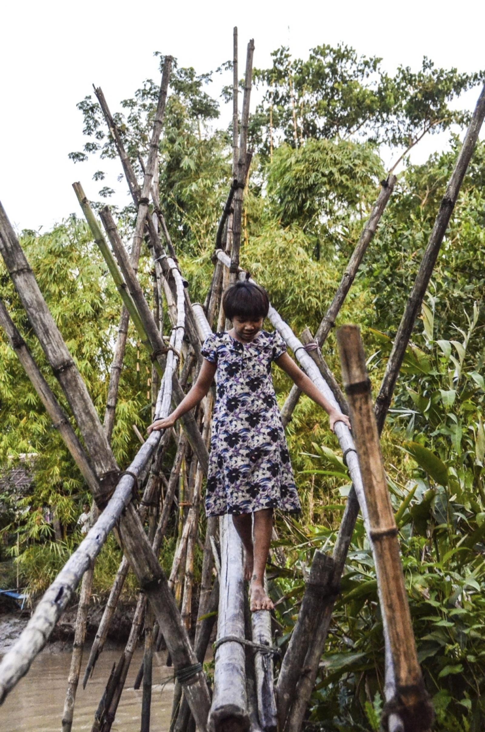 bambu seyala colabora